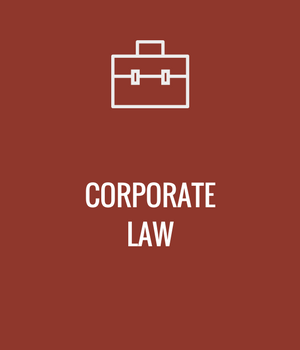 Georgia Corporate Law